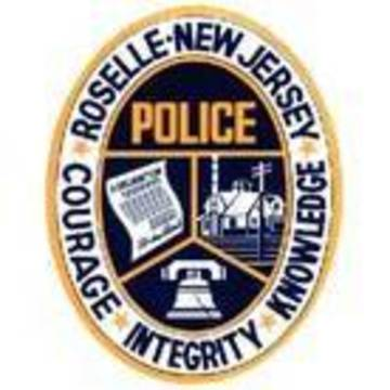 Top_story_cd27f4a244313caa8b58_roselle_police
