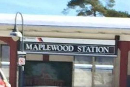 Top_story_d215f144ff7699812514_c2061bc15102dda41a76_maplewood_train_station