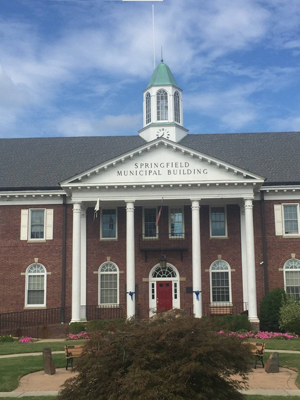 Top_story_d3ad6277b10f7cf450bf_springfield_townhall