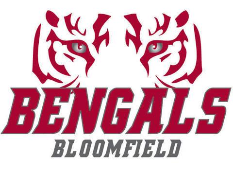 Top_story_d76fe42457b98ab3f4e5_bengals_logo