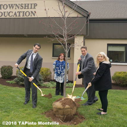 Top_story_e2366737ef8371ab56db_arbor_day_2016__2018_tapinto_montville