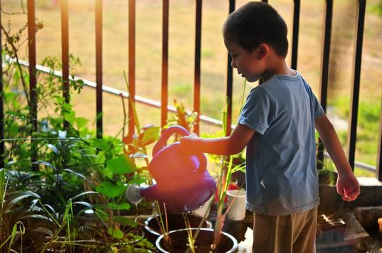 Top story e93e9d3f0a608b1342d9 child gardening