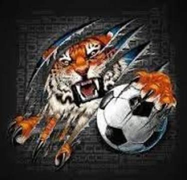 Top_story_eb9c6a13eacc48e9e679_tigers_soccer