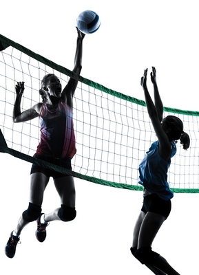 Carousel_image_708fb8b41ed62bde9161_volleyball_2